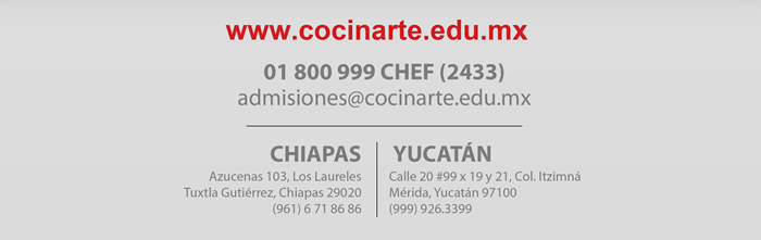 www.cocinarte.edu.mx